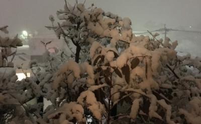雪が降る夜〜